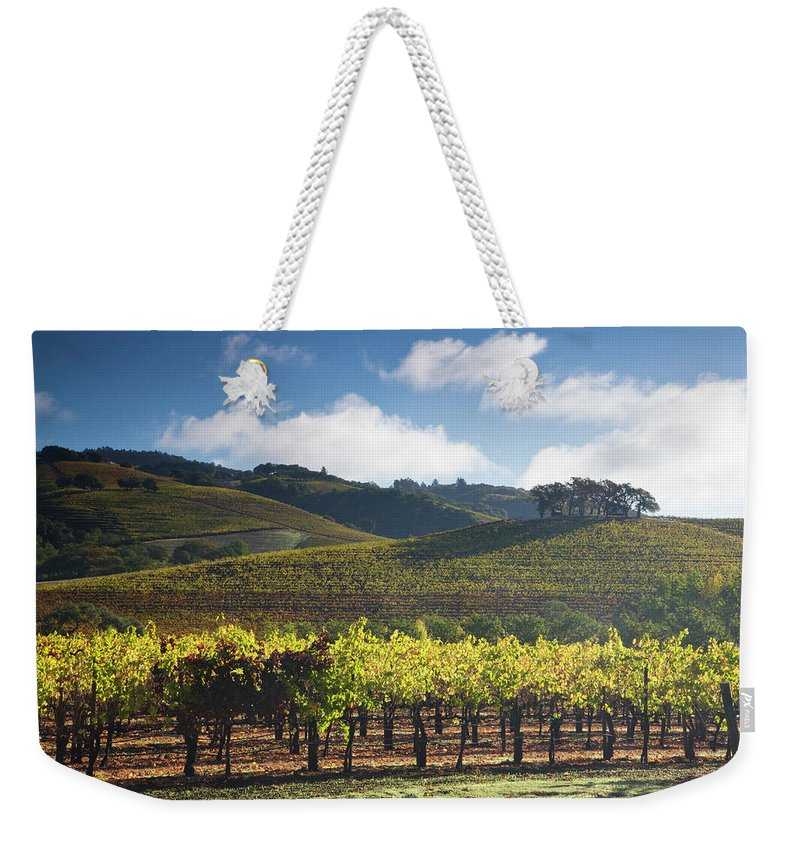 Sonoma County Weekender Tote Bag featuring the photograph Vineyards Autumn Time In Sonoma Valley by Darrell Gulin