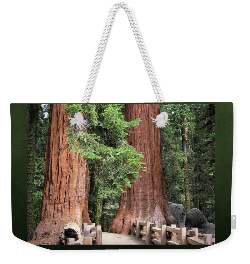 Sequoia National Park Weekender Tote Bag featuring the photograph Walk Among The Giants by Donna Kennedy