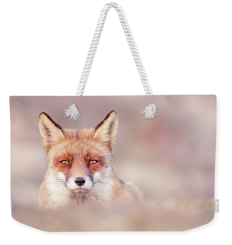 Red Fox Weekender Tote Bag featuring the photograph Watching The Watcher by Roeselien Raimond