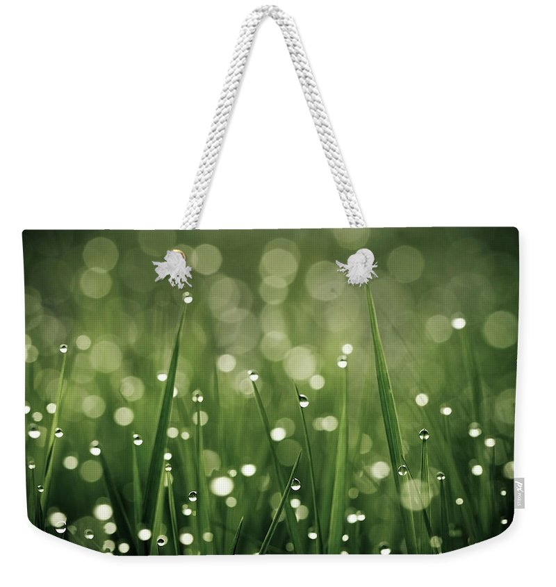 Grass Weekender Tote Bag featuring the photograph Water Drops On Grass by Florence Barreau