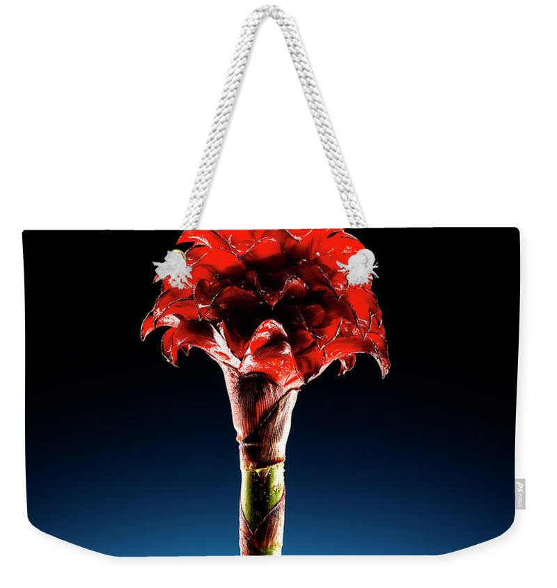 Single Object Weekender Tote Bag featuring the photograph Wax Ginger Flower by Chris Stein