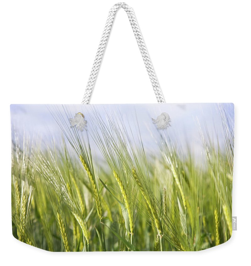 Scenics Weekender Tote Bag featuring the photograph Wheat Field by Peter Chadwick Lrps
