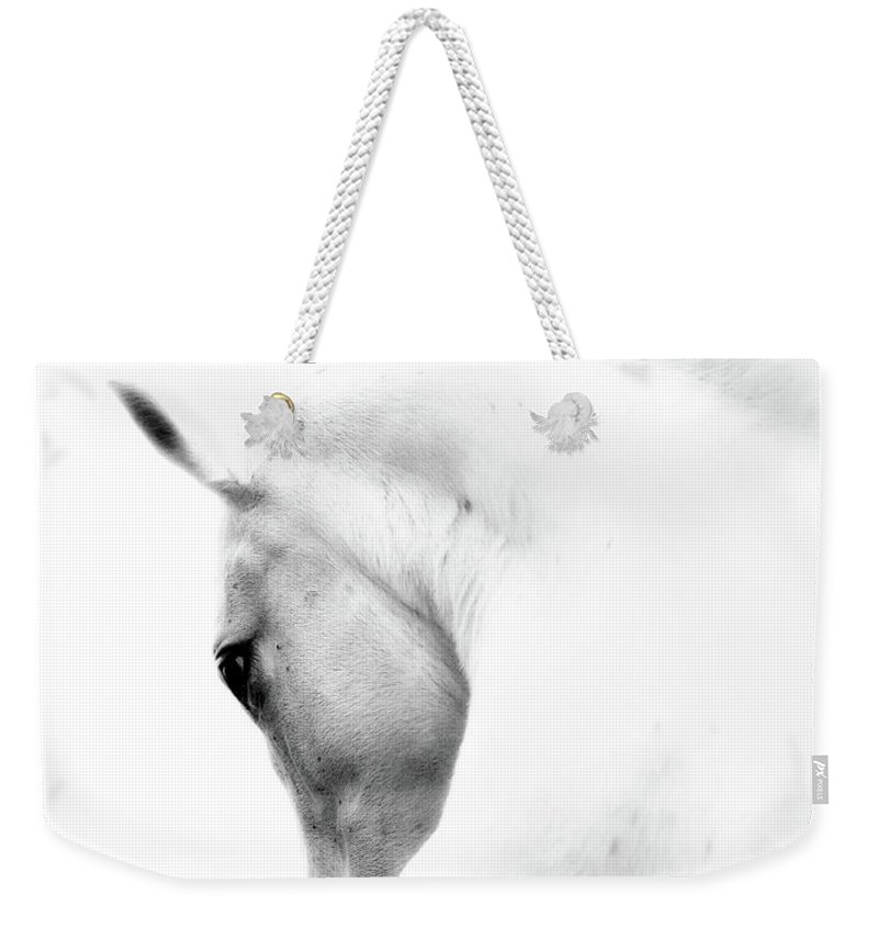 Horse Weekender Tote Bag featuring the photograph White Stallion Andalusian Horse Neck by 66north