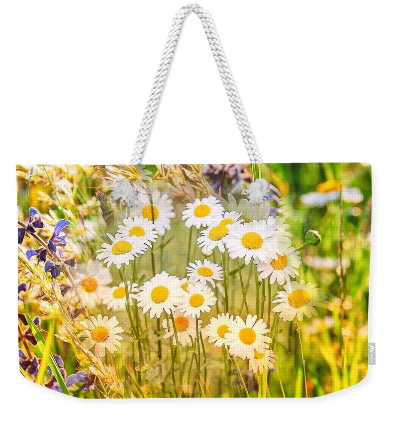 Wild White Daisies Weekender Tote Bag featuring the mixed media Wild White Daisies by Clive Littin