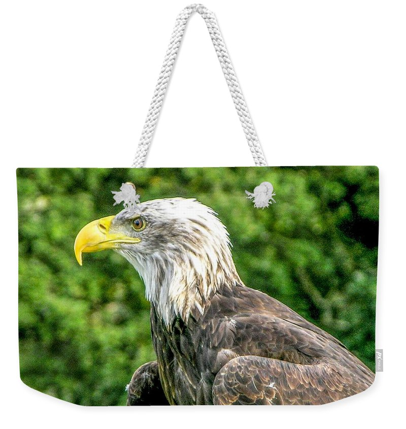 Bald Eagle Weekender Tote Bag featuring the photograph Wisconsin Bald Eagle by Tommy Anderson