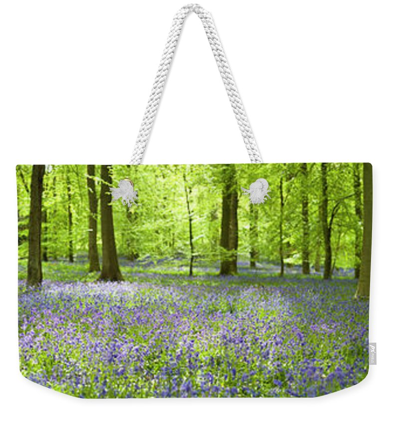 Scenics Weekender Tote Bag featuring the photograph Wonderful Woodland by Pkfawcett