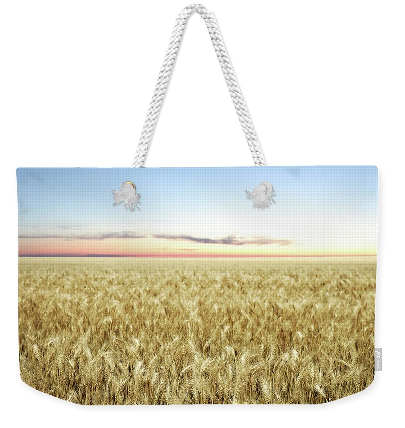 Scenics Weekender Tote Bag featuring the photograph Xxl Wheat Field Twilight by Sharply done