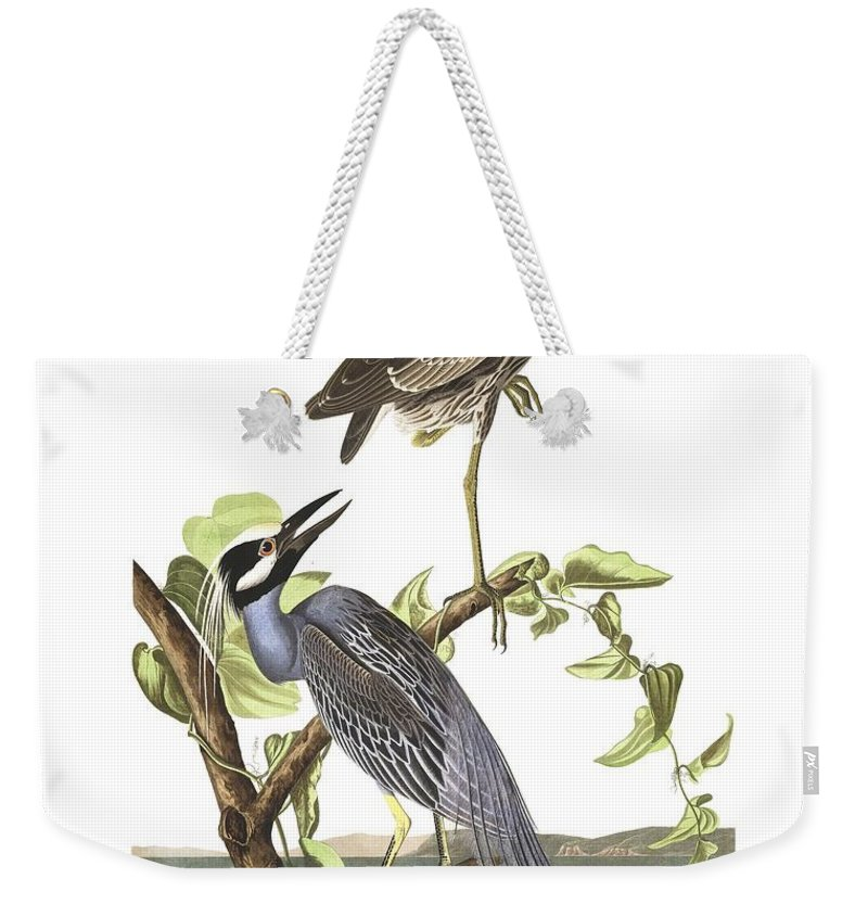 Yellow Weekender Tote Bag featuring the painting Yellow-crowned Heron By John Audubon by John Audubon