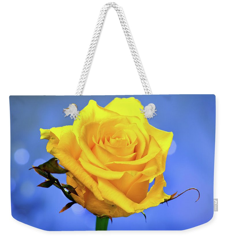 Slovenia Weekender Tote Bag featuring the photograph Yellow Rose by © Karmen Smolnikar