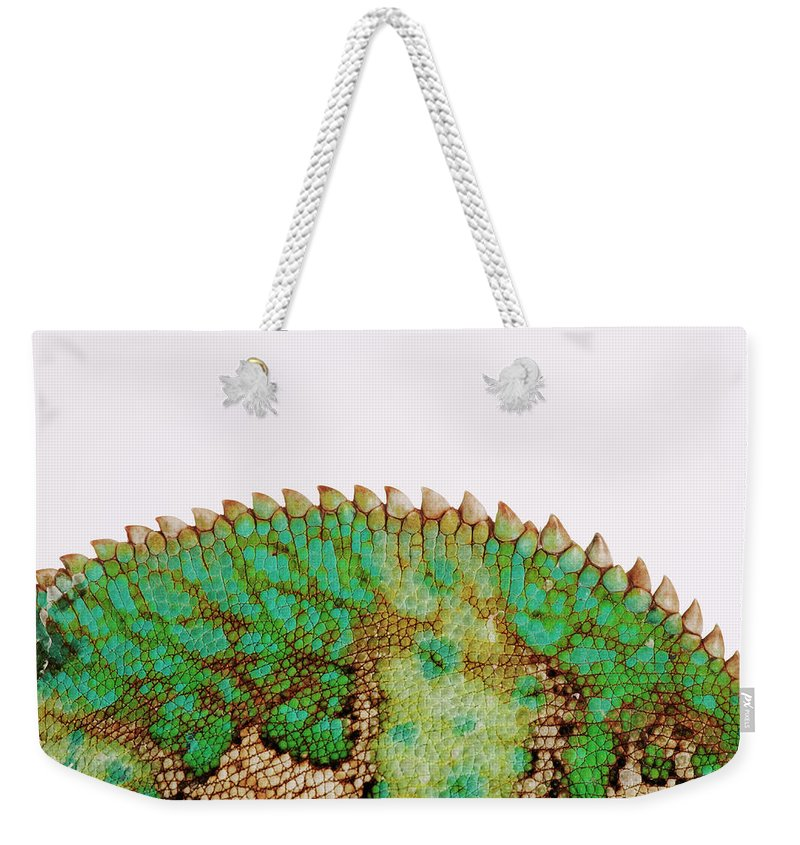 White Background Weekender Tote Bag featuring the photograph Yemen Chameleon, Close-up Of Skin by Martin Harvey