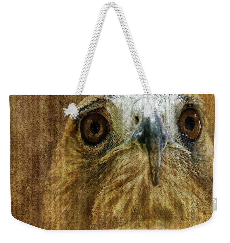 Hawk Weekender Tote Bag featuring the photograph Your Majesty by Lois Bryan