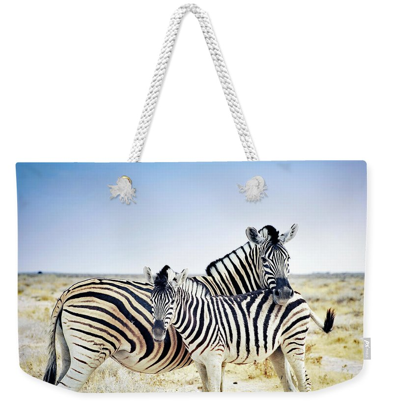 Horse Weekender Tote Bag featuring the photograph Zebra Mother And Her Foal In Etosha by Brytta