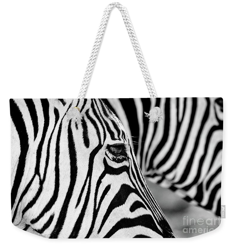Animal Themes Weekender Tote Bag featuring the photograph Zebra Stripes by Chris Kolaczan