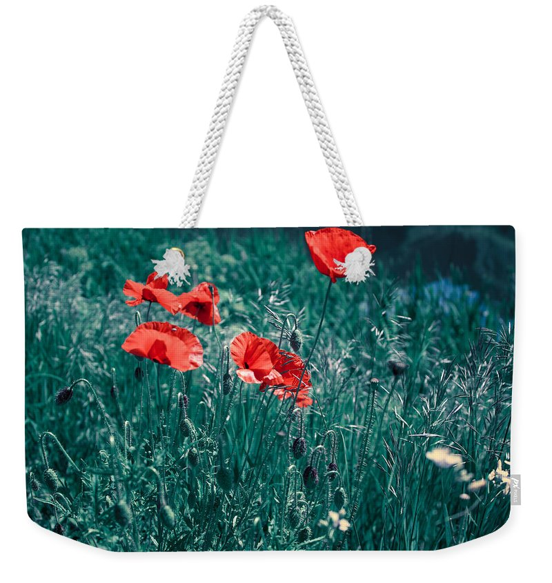 Poppies Weekender Tote Bag featuring the photograph Poppies by Maria Rzeszotarska