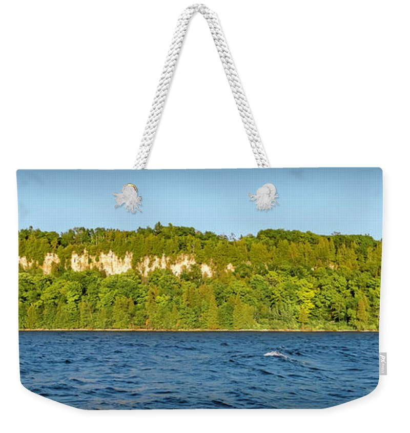 Eagle Weekender Tote Bag featuring the photograph 20-0608-0121 by Anthony Roma