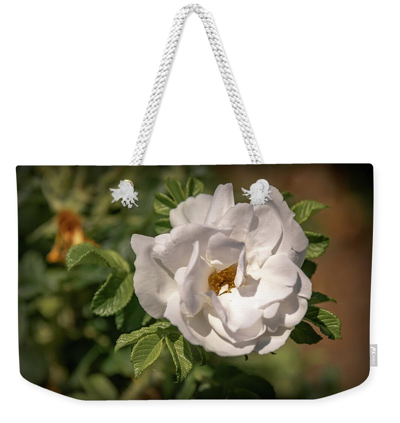 Flowers Weekender Tote Bag featuring the photograph 20-0616-0550 by Anthony Roma