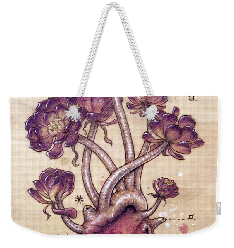 Pyrography Weekender Tote Bag featuring the pyrography Aeonium Heart by Fay Helfer