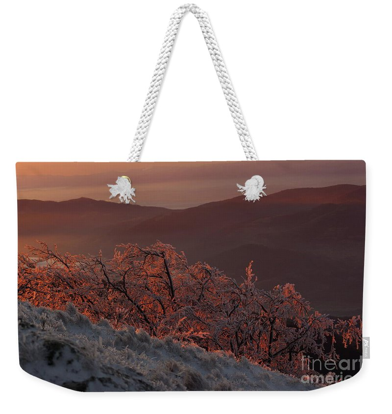 Winter Weekender Tote Bag featuring the photograph An winter landscape in the morning by Amalia Suruceanu