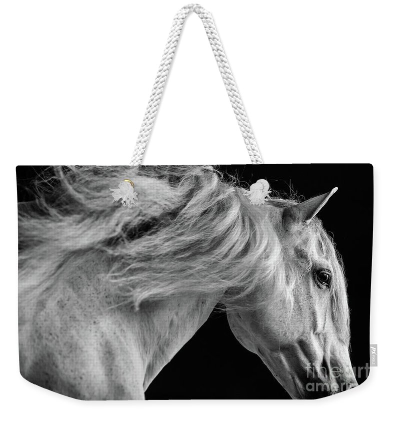 Horse Weekender Tote Bag featuring the photograph Andalusian Motion by Shelley Paulson