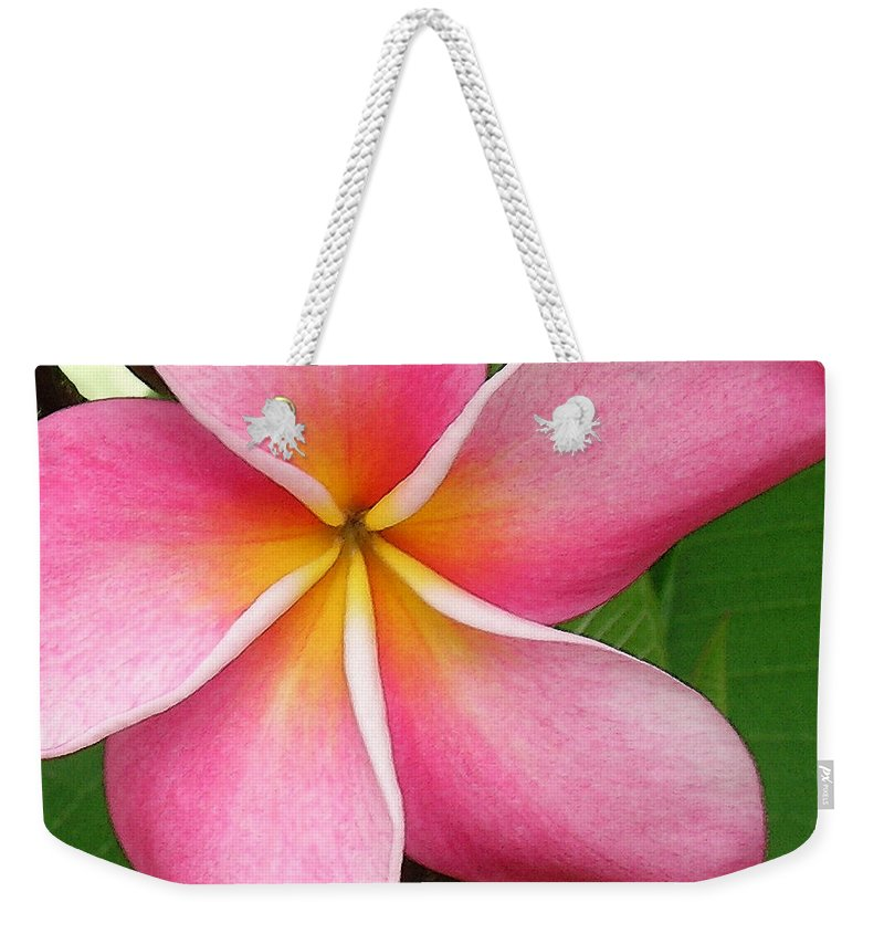 Hawaii Iphone Cases Weekender Tote Bag featuring the photograph April Plumeria by James Temple