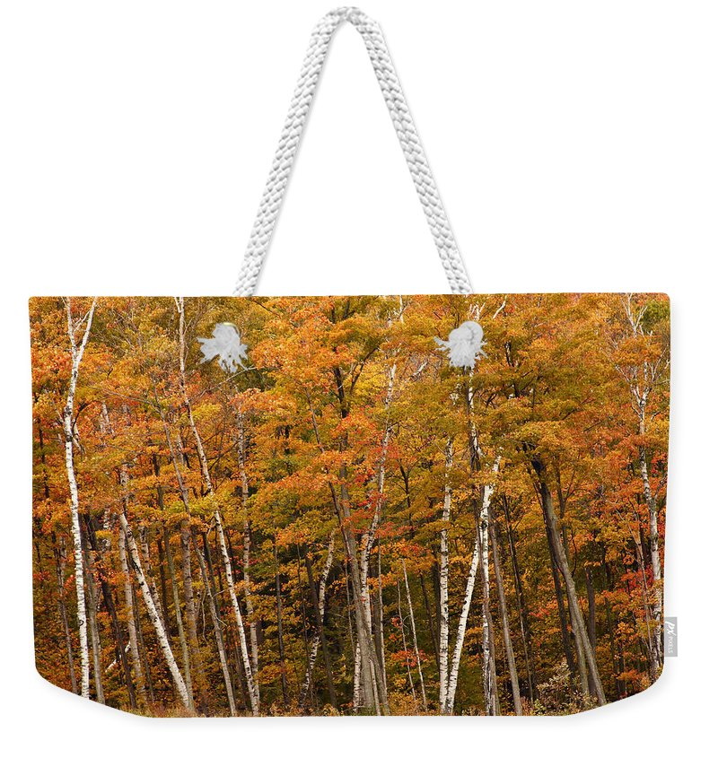 3scape Weekender Tote Bag featuring the photograph Autumn Glory by Adam Romanowicz