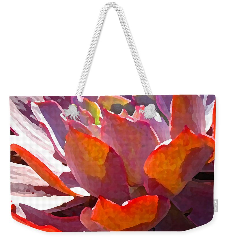 Succulent Weekender Tote Bag featuring the photograph Backlit Afterglow Succulent by Amy Vangsgard
