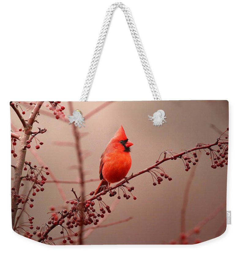 Cardinal Weekender Tote Bag featuring the photograph Bold Beauty by Rob Blair
