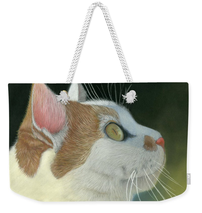 Cat Weekender Tote Bag featuring the pastel Cat Portrait Pastel Painting by Dave Nevue