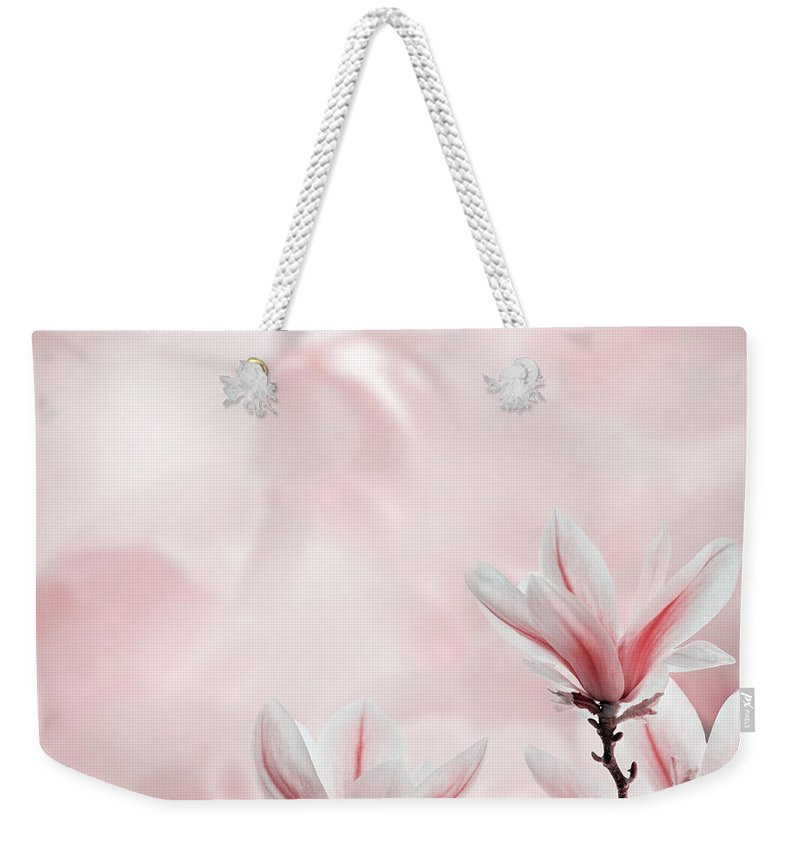 Magnolia Weekender Tote Bag featuring the photograph Closeup Of Blooming Magnolia Tree In Spring by Jelena Jovanovic