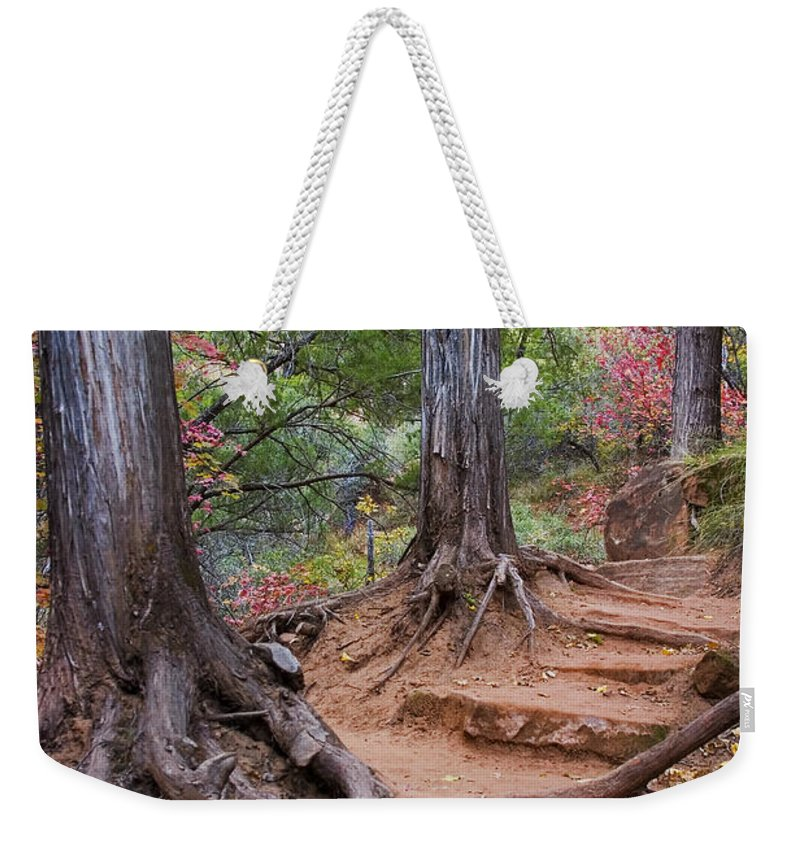3scape Weekender Tote Bag featuring the photograph Colors of Zion by Adam Romanowicz