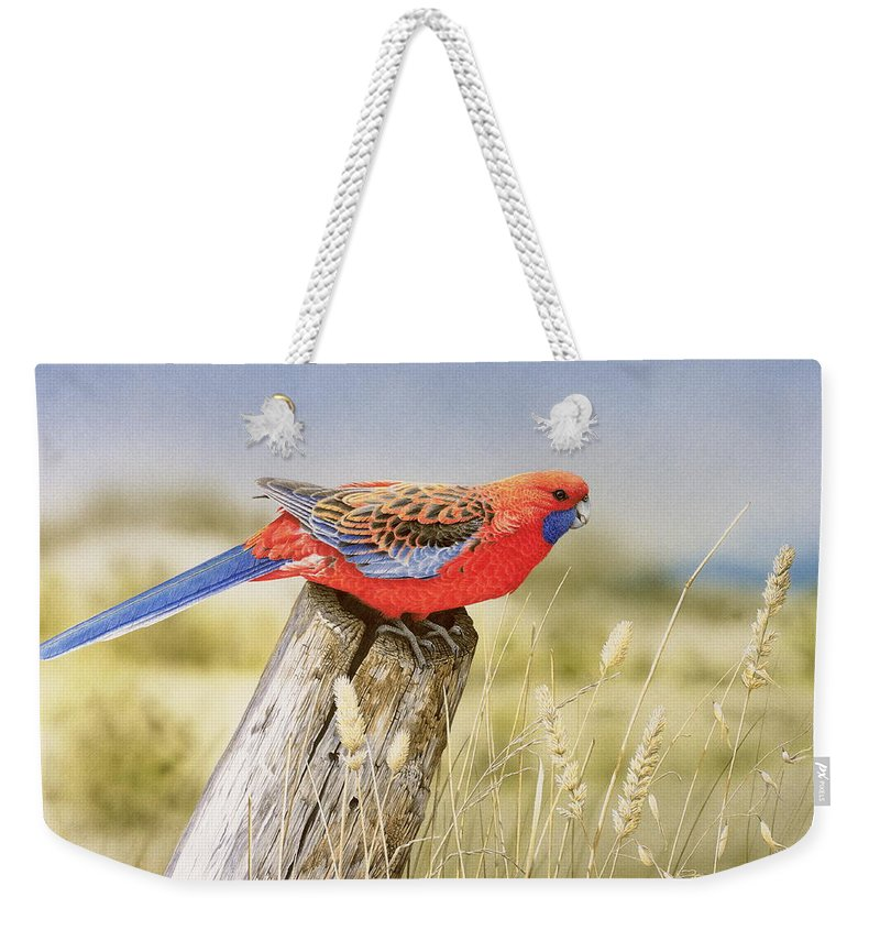 Bird Weekender Tote Bag featuring the painting Colour and Light - Crimson Rosella by Frances McMahon