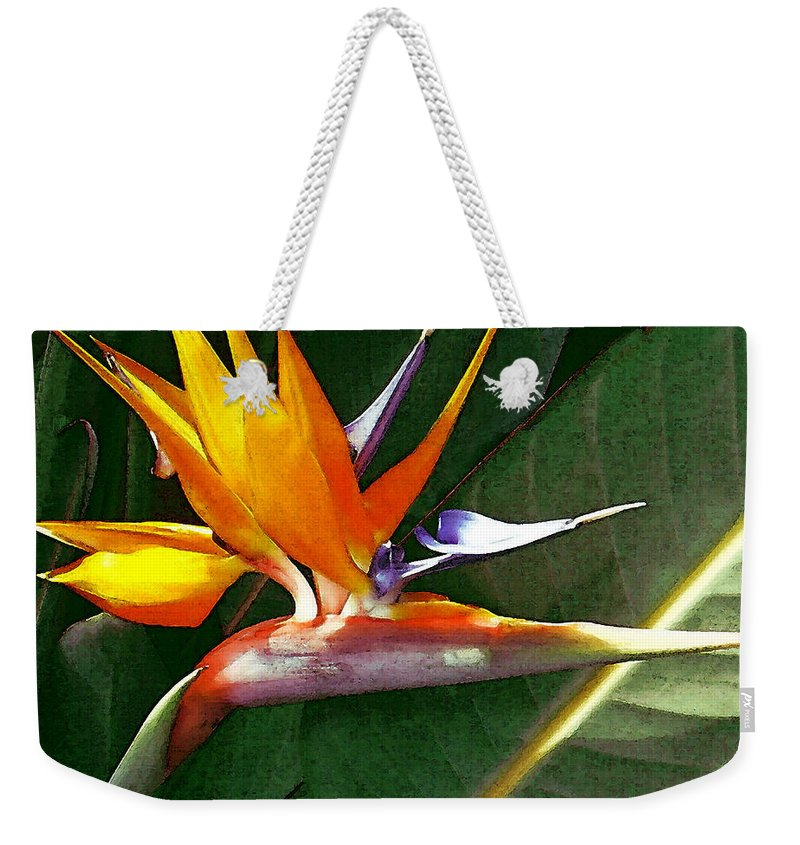 Bird Of Paradise Weekender Tote Bag featuring the photograph Crane Flower by James Temple