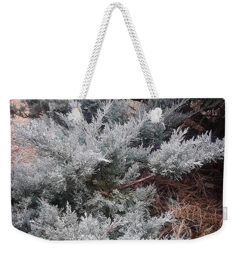 Scenery Weekender Tote Bag featuring the photograph First Frost by Ariana Torralba