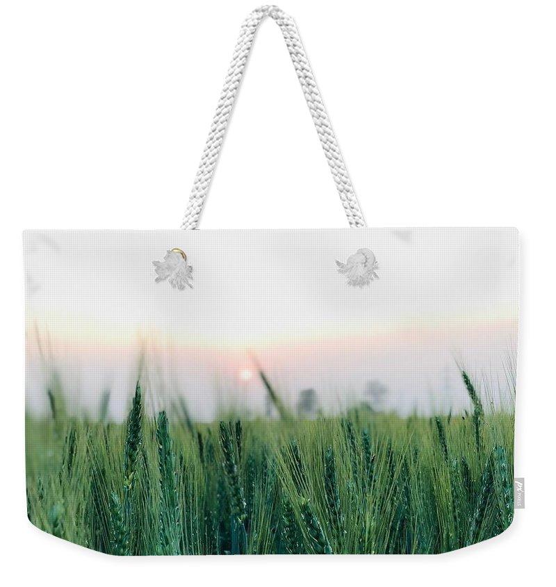 Scenery Weekender Tote Bags