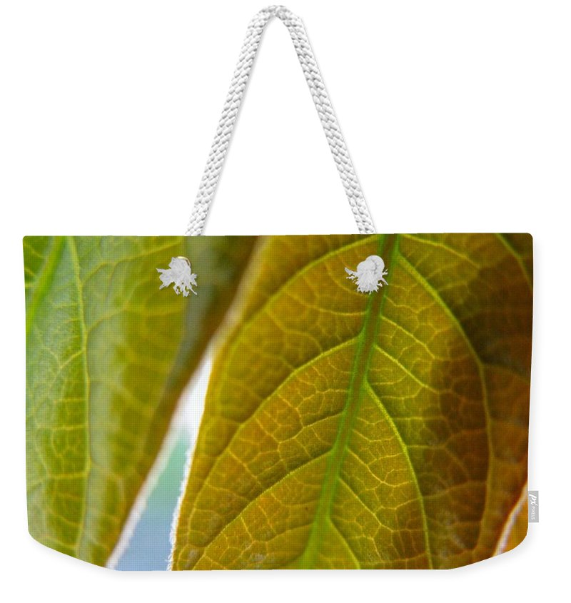 Leaves Weekender Tote Bag featuring the photograph Interesting Leaves by Rhonda Barrett