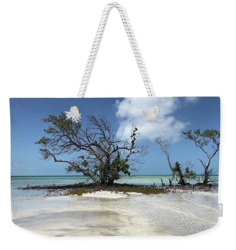 The Keys Weekender Tote Bags