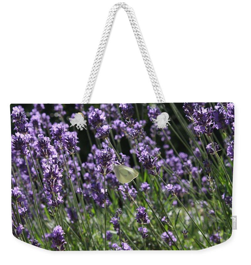 Lavender Weekender Tote Bag featuring the photograph Lavender by Vicki Cridland