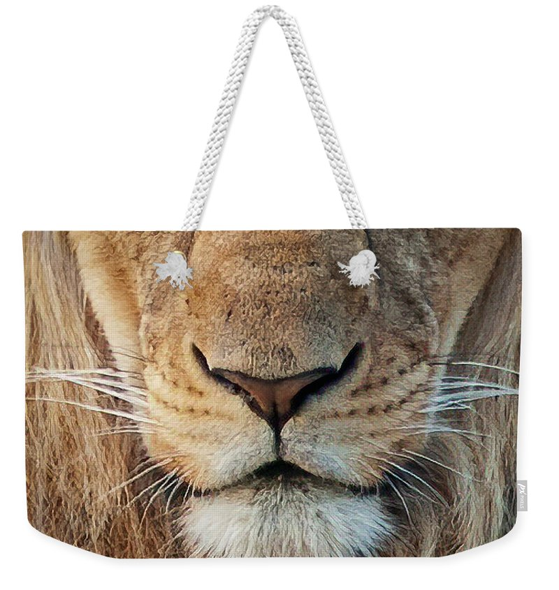 Lion Weekender Tote Bag featuring the photograph Lion by Steven Sparks