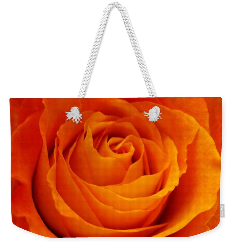 Rose Weekender Tote Bag featuring the photograph Mystic Rose by Rhonda Barrett