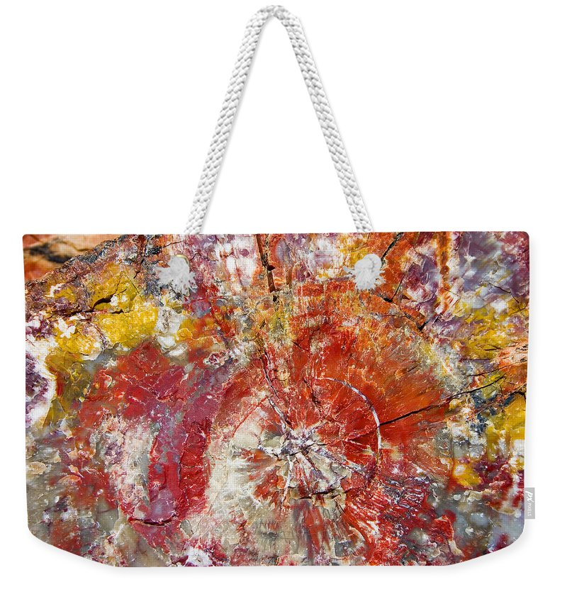 Petrified Wood Stone Texture Abstract Color Skip Hunt Weekender Tote Bag featuring the photograph Painted Desert Wood 1 by Skip Hunt
