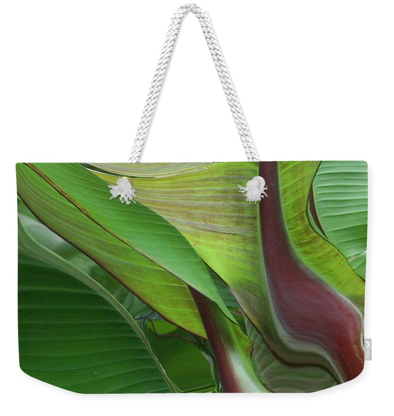Plant Weekender Tote Bag featuring the photograph Plantflow by Linda Sannuti