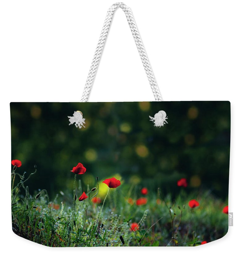 Background Weekender Tote Bag featuring the photograph Poppies On Green by Vicente Sargues