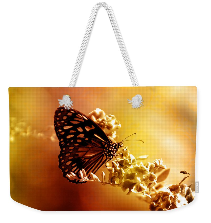 Butterfly Weekender Tote Bag featuring the photograph Radiance by Holly Kempe