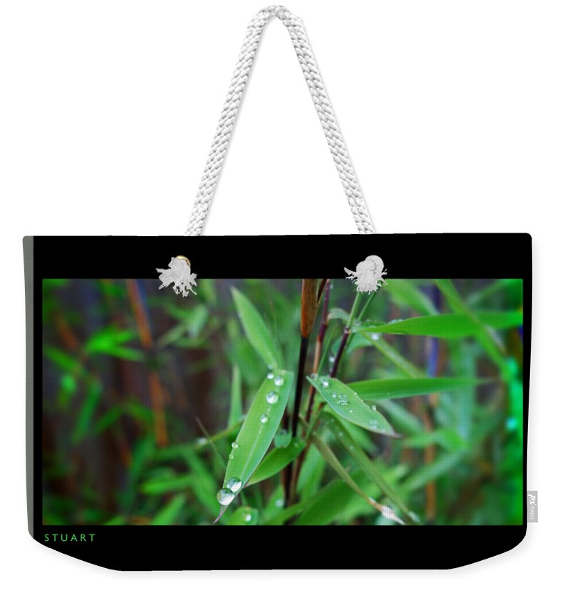 Rain Drops Weekender Tote Bag featuring the painting Rain On Bamboo by Charles Stuart