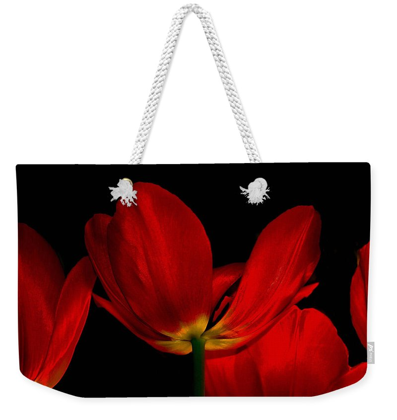 Flowers Weekender Tote Bag featuring the photograph Red Silk by Linda Sannuti