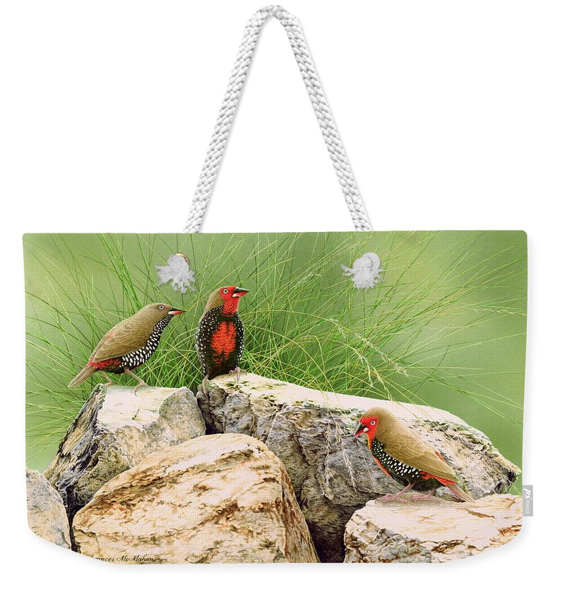 Bird Weekender Tote Bag featuring the painting Rock Stars - Painted Finches by Frances McMahon