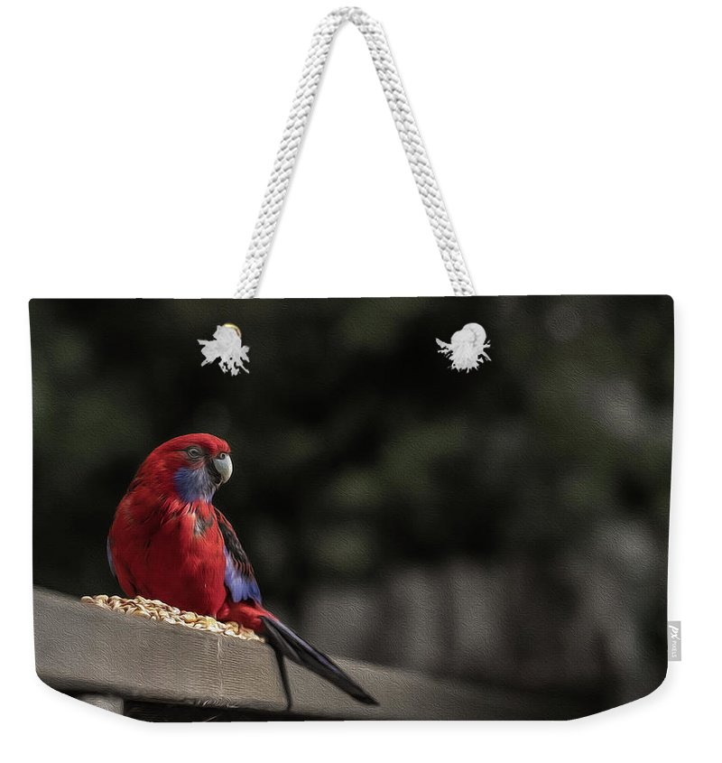 Rosella Weekender Tote Bag featuring the photograph Rosella 1 by Leigh Henningham