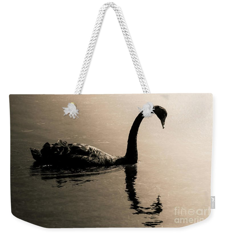 Water Weekender Tote Bag featuring the photograph Silhouetted by Jorgo Photography - Wall Art Gallery