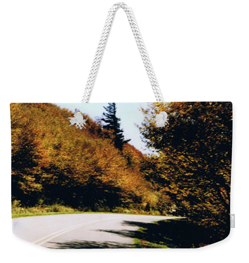 High In The Great Smoky Mtn. As You Round A Curve Stands This Noble Spruce. Weekender Tote Bag featuring the photograph Single Spruce by Seth Weaver