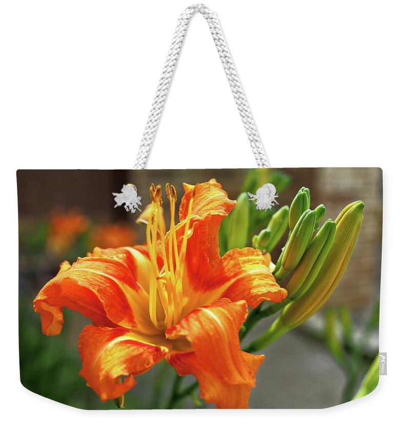 Orange Weekender Tote Bag featuring the photograph Spring Flower 14 by C Winslow Shafer